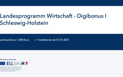 Digibonus I – Schleswig-Holstein fördert die Erstellung von Internetseiten und Onlineshops